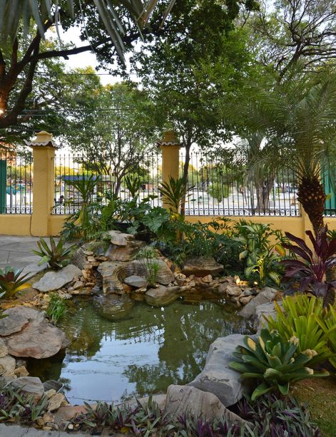 <span>Jardim do Barão - Thiago Borges. O paisagista cultivou no espaço uma diversidade de plantas regionais e criou um lago artificial para reforçar o charme bucólico do jardim.</span>