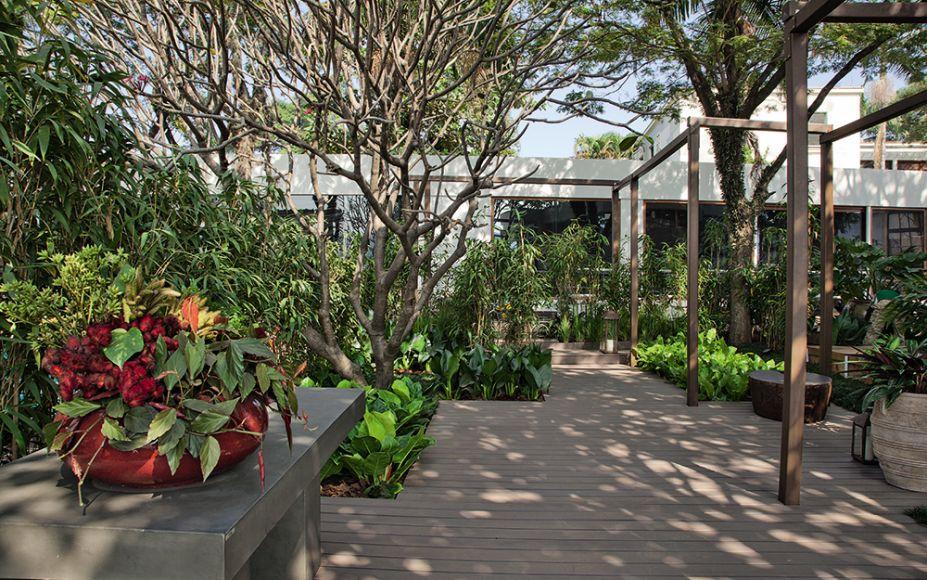 <span>CASACOR São Paulo 2016. Jardim da Piscina - Pessuto Paisagismo. O paisagista Ricardo Pessuto assumiu o jasmim-manga, as palmeiras e a jabuticabeira do local como ponto de partida. Acrescentou vegetação com flores na parte mais ensolarada e optou, na área sombreada, por espécies como pacovás e asplênios. Para garantir a privacidade da piscina, ela foi abraçada por paredes de cobogós cimentícios. A iluminação também inova, localizada no topo das vigas de madeira.</span>