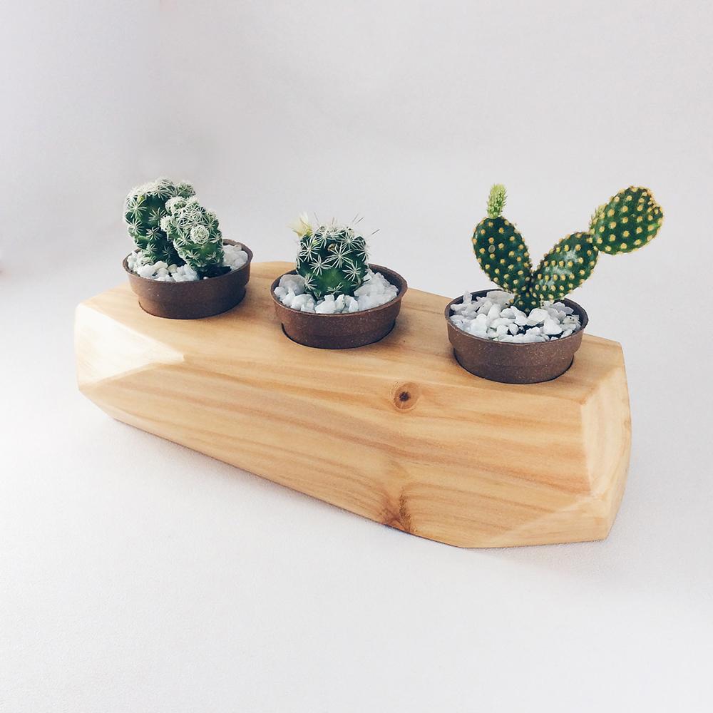 mini jardim wood mood