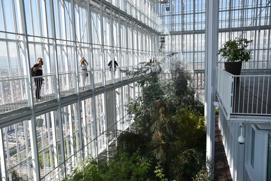 Paredão de vidro que permite a entrada de luz natural, um dos fatores que garante a sustentabilidade do lugar