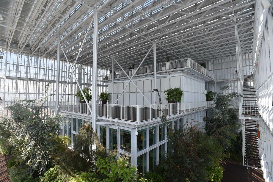 Jardim suspenso, um dos pontos altos do edifício