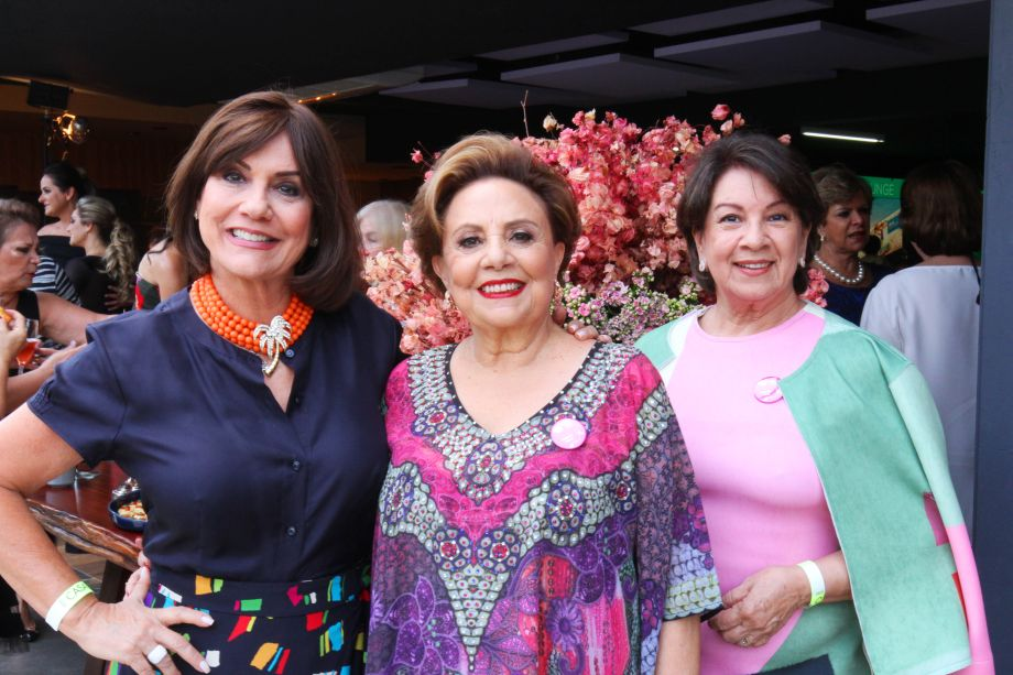Ana Maria Gontijo Maria Therezinha Falcão e Heloisa Hargreaves