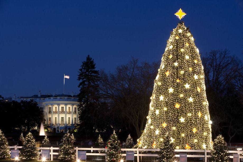 Árvore de Natal 2009 da Casa Branca, durante o governo Obama.
