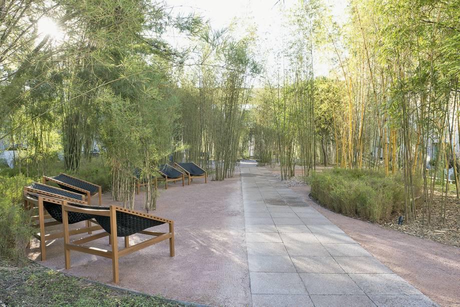 CASACOR São Paulo 2017 – Alexandre Furcolin - Pátio das Tabocas. O bosque de 530 m² é criado a partir de mais de 500 touceiras, que guardam diversas espécies de bambu, como brasil, jardim, anão e quadrado. No piso, foi utilizado um revestimento drenante, da Braston.