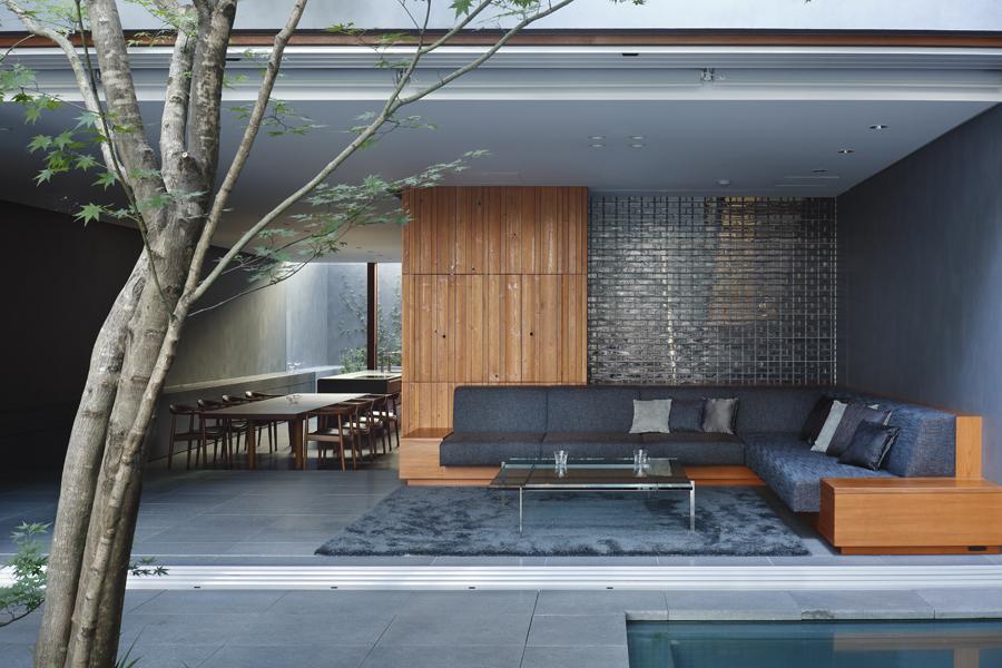 Casas: Optical Glass House / Hiroshi Nakamura & NAP