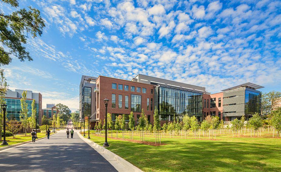 Nesta parte do campus, as árvores cultivadas podem, eventualmente, ser transferidas para outros locais do terreno.