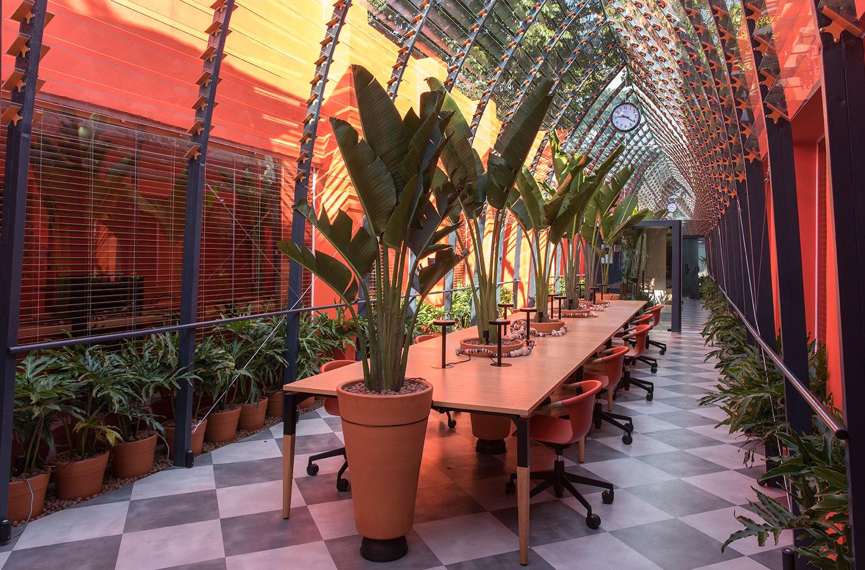 Co-Working com uma longa mesa e bananeiras no centro