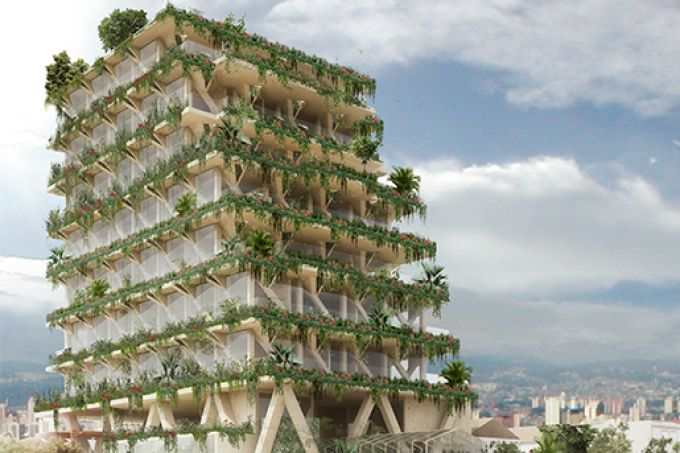 urban-forest-amata-Tryptique
