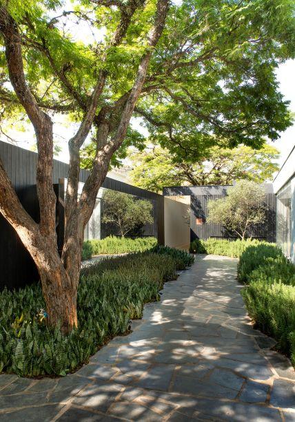<span>Jardim da Villa Olivo - Daniel Nunes. A erva foi inserida em meio as demais folhagens.</span>