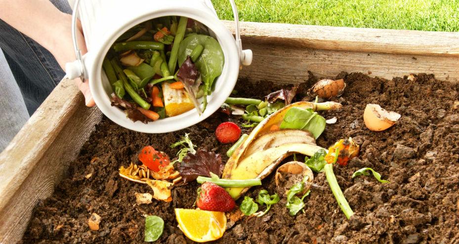 Lixo orgânico sendo depositado na terra para fazer compostagem
