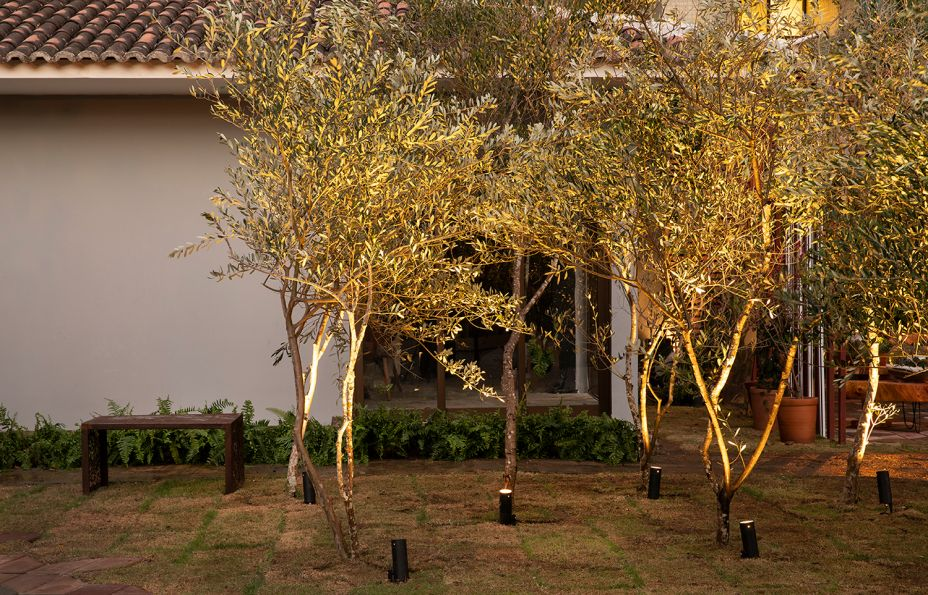 Projeto Luminotécnico - Estúdio Carlos Fortes. A iluminação integra as áreas externas, projetadas por três escritórios, através da linguagem da luz. As fachadas foram valorizadas, e as árvores do terreno são pontuadas como elementos de ligação entre as áreas. Assim, vegetação e aspectos históricos da arquitetura foram harmonizados com as intervenções dos paisagistas.