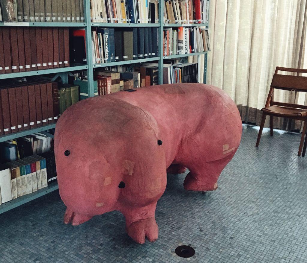 Polochon original na Casa de Vidro. Estante com livros ao fundo