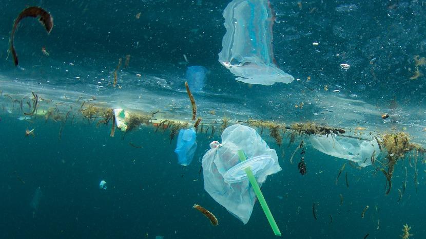 lixo no mar ; ilha de lixo no mar