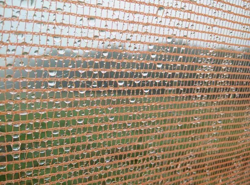 Detalhe de gotículas de água retidas na trama da torre