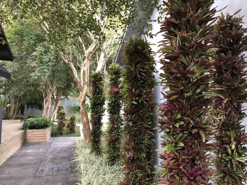 Jardim de Pandora - Alalou Paisagismo. Vencedor da categoria Melhor Jardim.