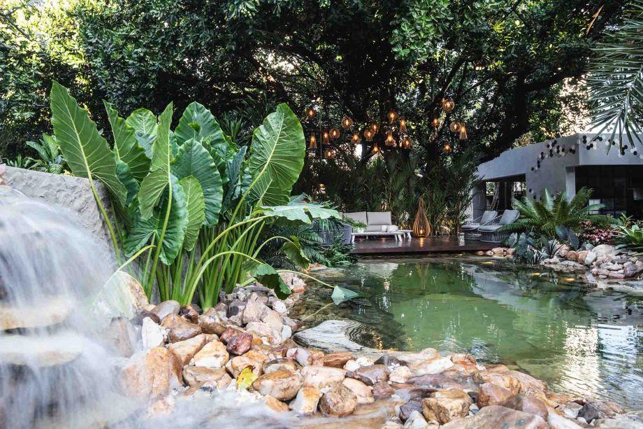 Em Ambiente que Melhor Valorizou o Paisagismo, o Oásis Tropical de Thiago Borges ficou em primeiro lugar.