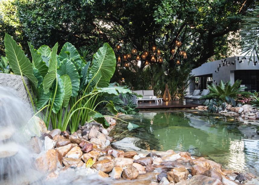 CASACOR Ceará 2019. Oásis tropical - Thiago Borges. O contato com a natureza é o ponto-chave do ambiente, que tem como elemento principal a piscina natural. Desenvolvida a partir de uma filtragem especial, que gera uma água 100% transparente e sem aditivos químicos, a atração funciona como um lago, permitindo que as pessoas tomem banho e interajam com peixes e plantas aquáticas. Dividida em três níveis, a piscina conta com queda d'água, área exclusiva para plantas e a parte de banho.
