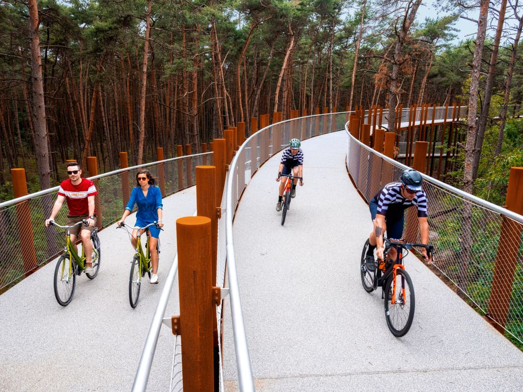 Pessoas pedalando pela ciclovia na Bélgica.