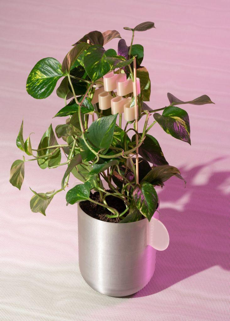 Os potes e clipes podem ser compostados no design de Henriksson e Lindgren