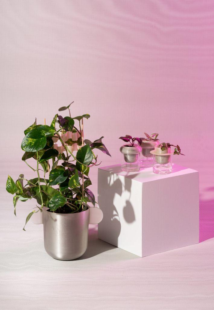 Henriksson e Lindgren fizeram vasos de flores e clipes de plantas com resíduos de maçã
