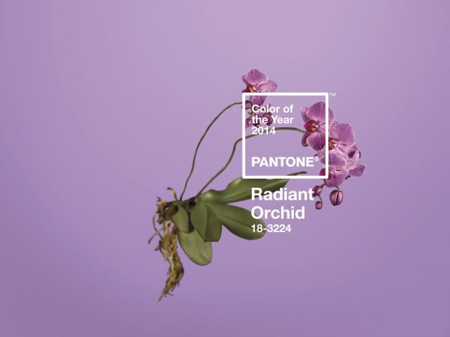 PANTONE 18-3224 Radiant Orchid: expressiva e abrangente, esta variação entre roxo e o lilás é uma cor que estimula a criatividade e a originalidade, além de trazer confiança. Segundo a diretora executiva do Pantone Color Institure, Leatrice Eiseman, a Radiant Orchid intriga os olhos e desperta a imaginação.