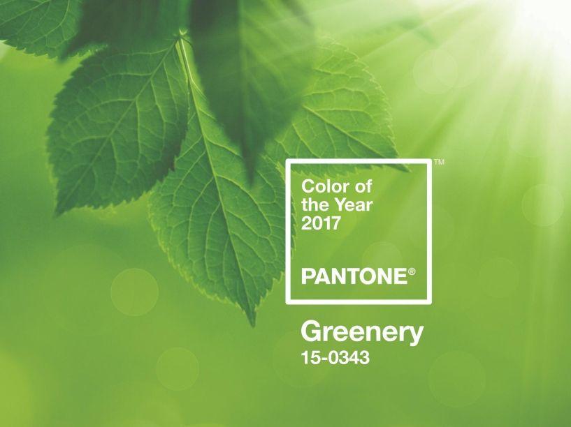 PANTONE 15-0343 Greenery: um tom fresco, moderno, amarelo- esverdeado, que lembra os primeiros dias da primavera, quando os verdes na natureza se renovam em novas folhagens. Se reflete também na vontade do consumidor de respirar profundamente e uma vida ao ar livre.