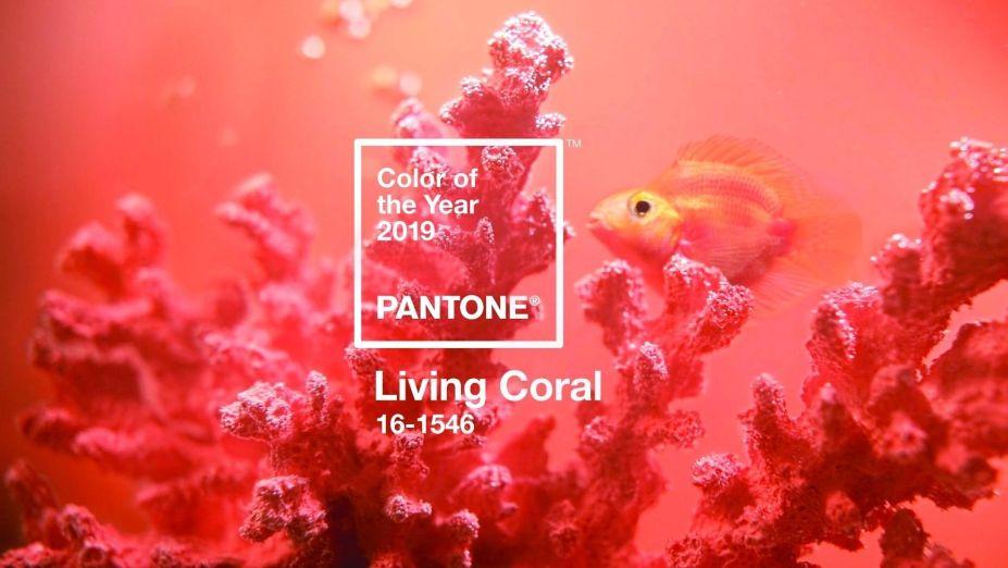 PANTONE 16-1546 Living Coral: segundo a Pantone, este coral animado e cheio de vida inspirado em cores da natureza nos abraça calorosamente nutrindo e promovendo uma aura de conforto e desprendimento neste ambiente em constante transformação.