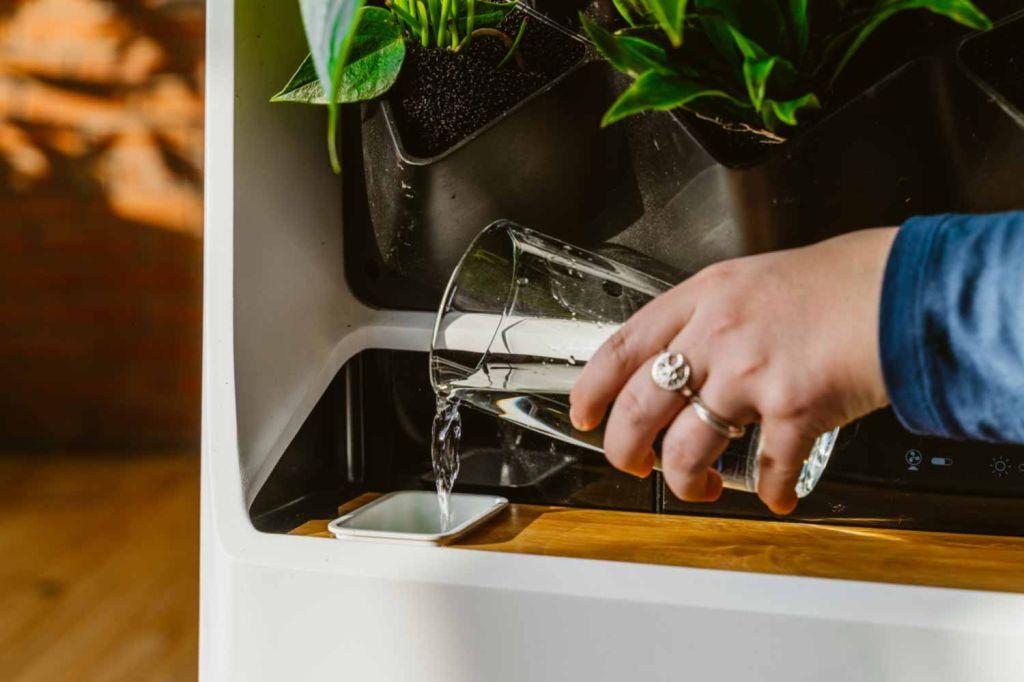 Horta inteligente purifica o ar de ambientes internos - Na imagem é possível ver o dispenser de água