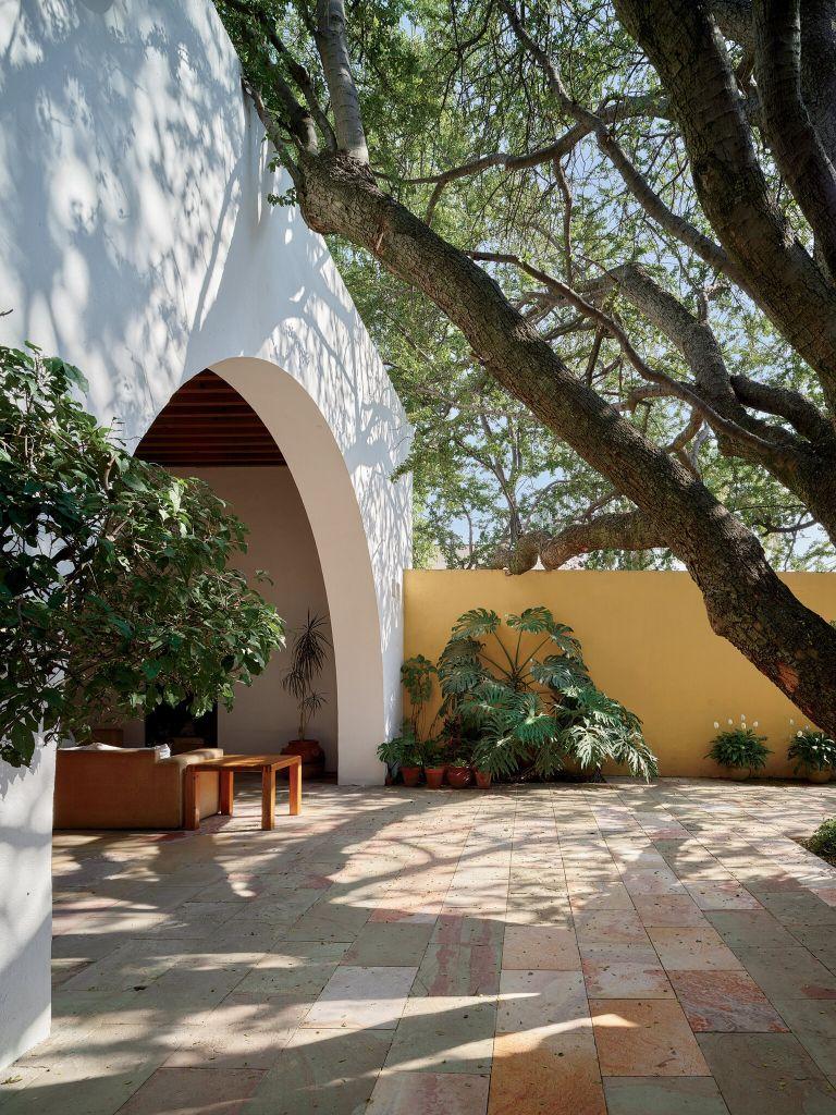Uma parede amarela brilhante, com filodendros e wedelia no pátio da Casa Padilla.