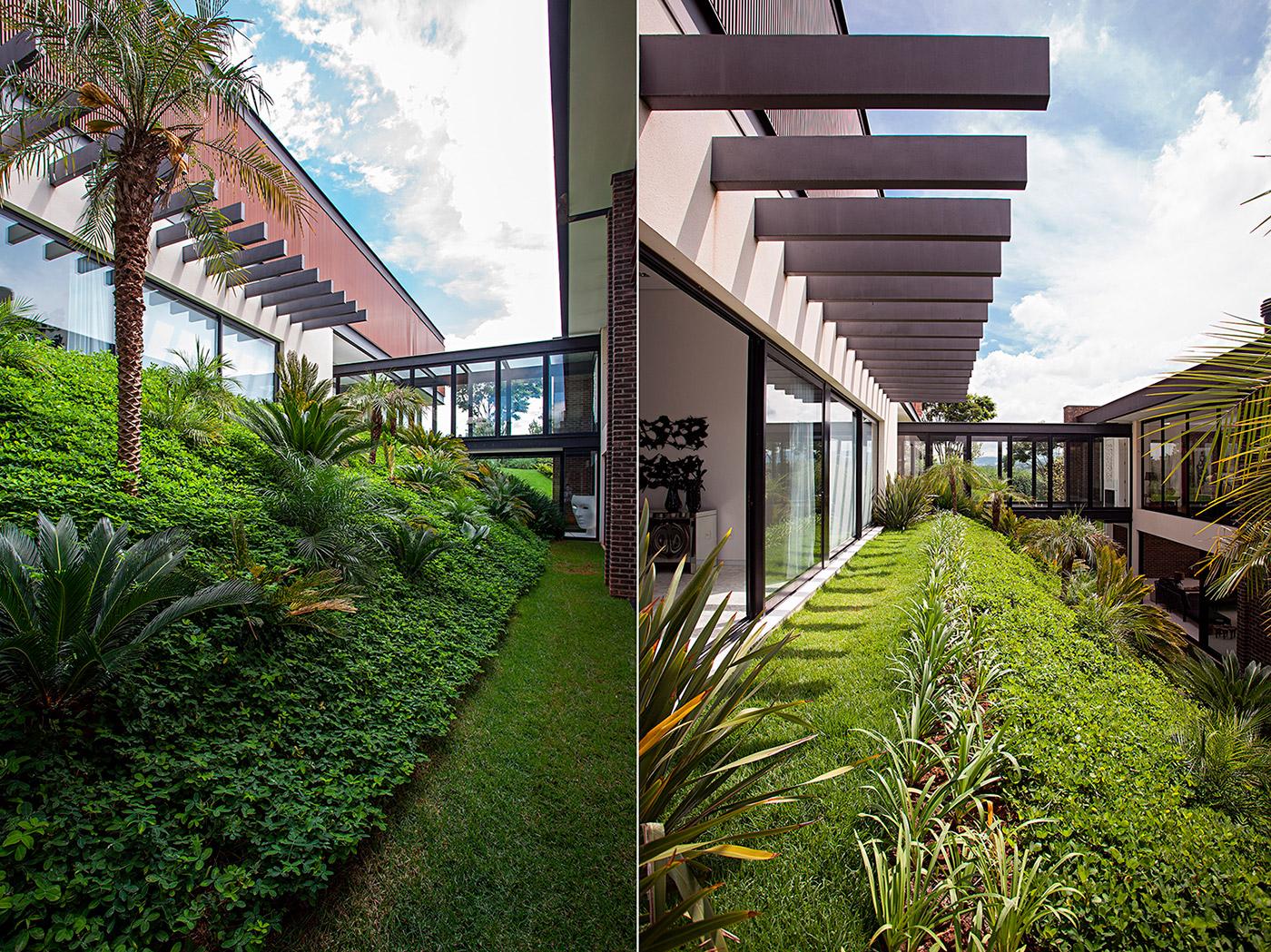 jardim paisagismo roberto riscala tropical parque plantas