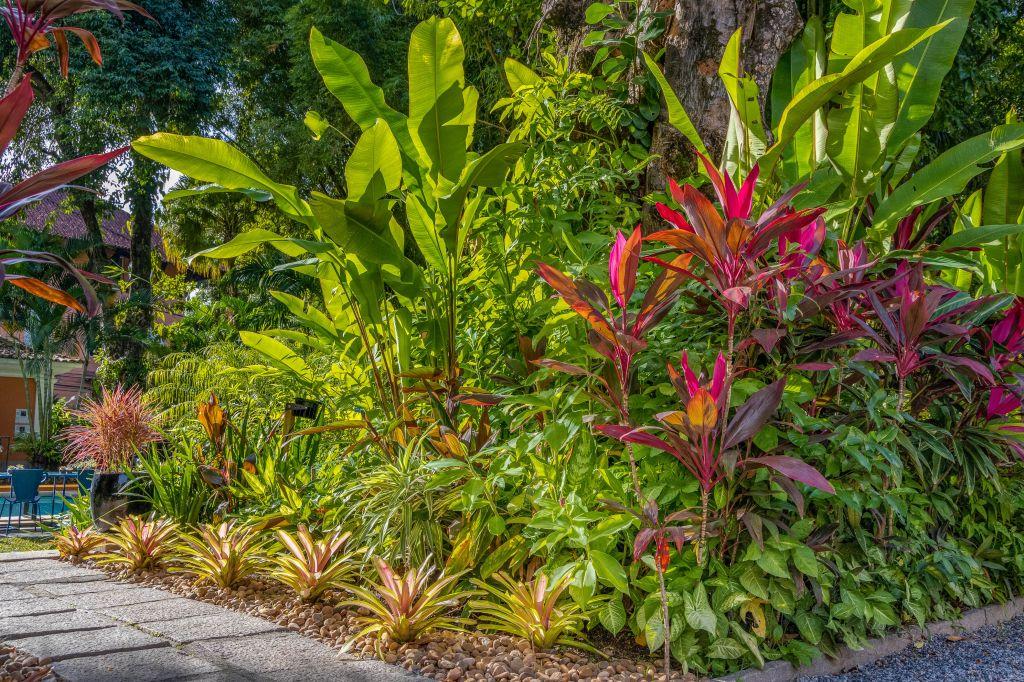 bromélias; casacor rio; ricardo portilho; jardim