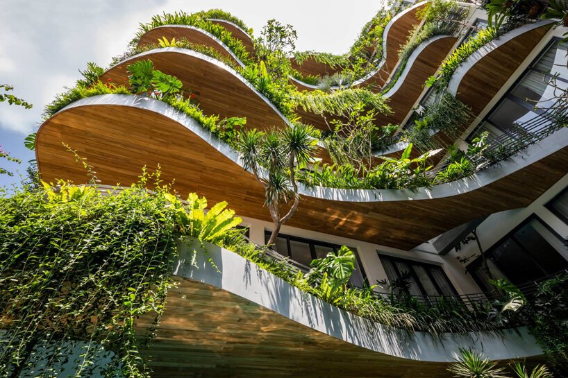 prédio no vietnã com plantas em queda