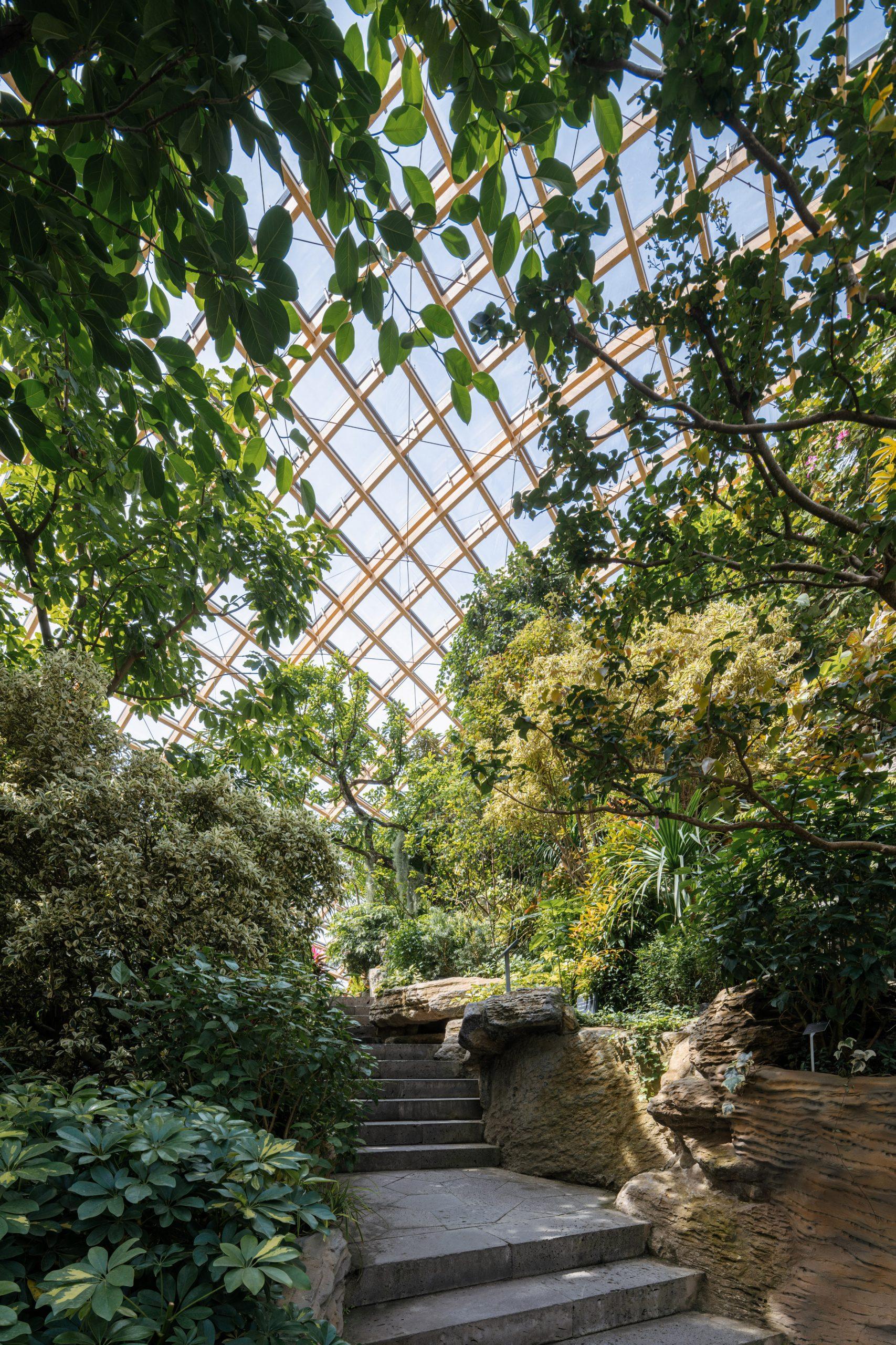 jardim botânico taiyuan china