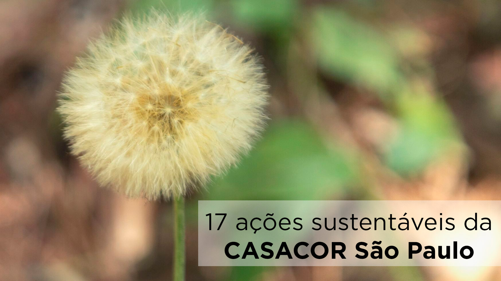 17 ações sustentáveis da CASACOR SP baseadas nos ODS da ONU