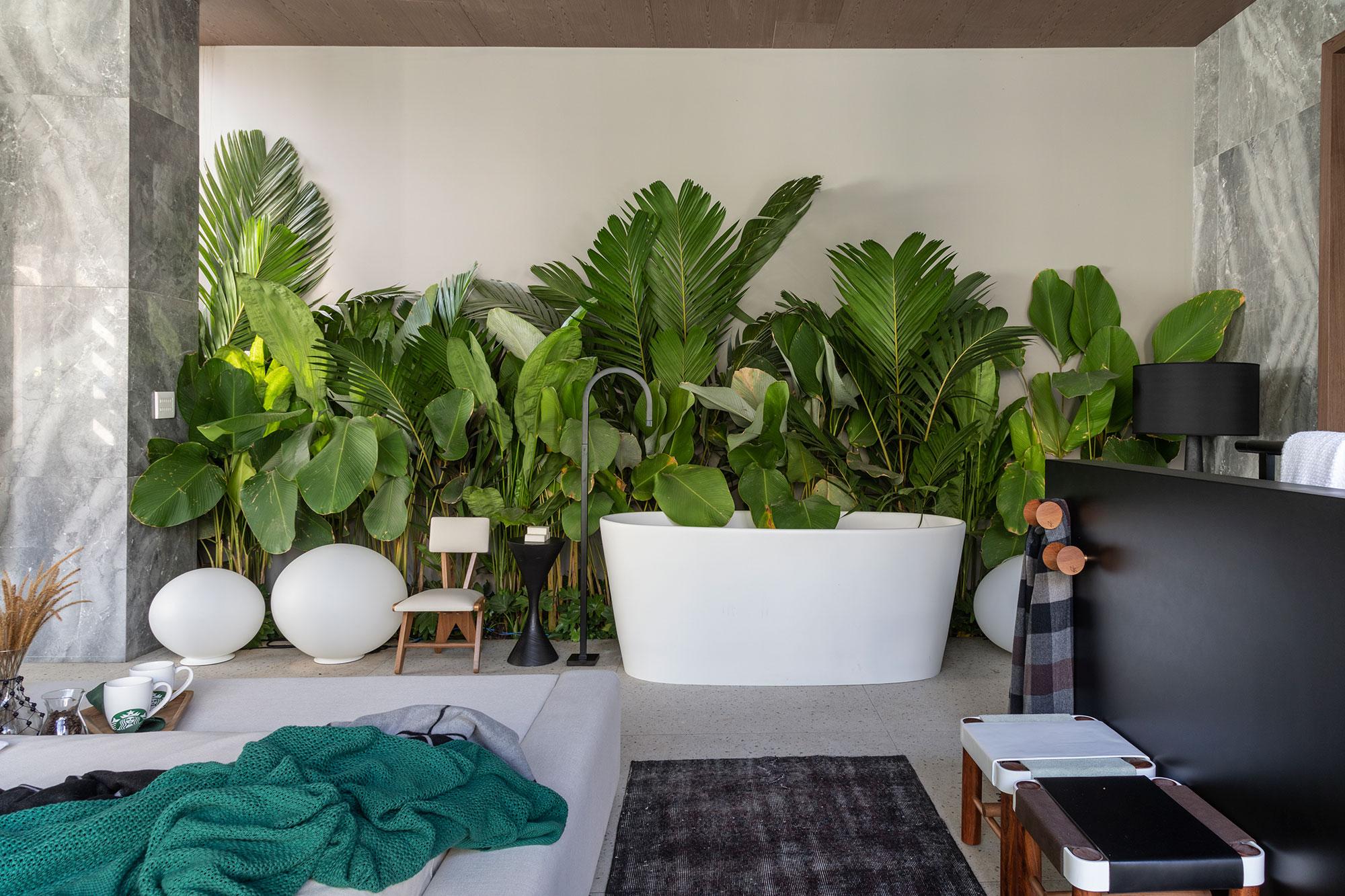 casa grao tres arquitetura shower plants casacor